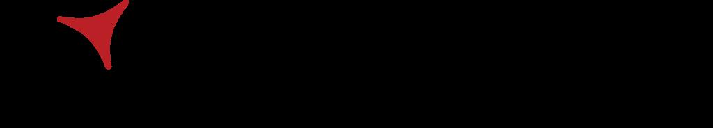 logo_allview